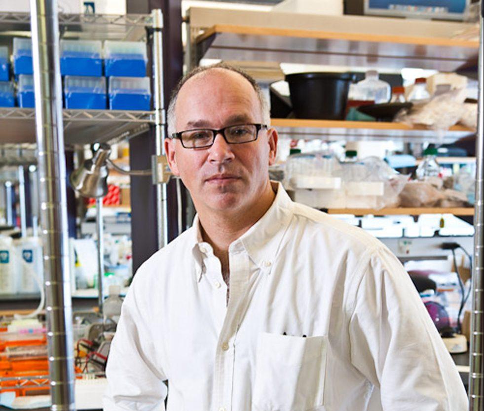 Photo of Professor Fishell from NYU