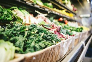 """Report back: """"Toward healthy, sustainable and equitable global food systems: Is the global food supply aligned with healthy eating guidelines?"""""""